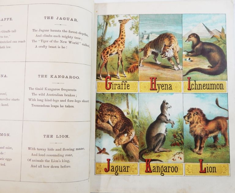 The Child's Picture Book of Alphabets(?). ABC.